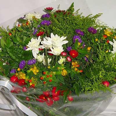 זר פרחי בר צבעוני 20 - פרחי אוריינטל - אור יהודה