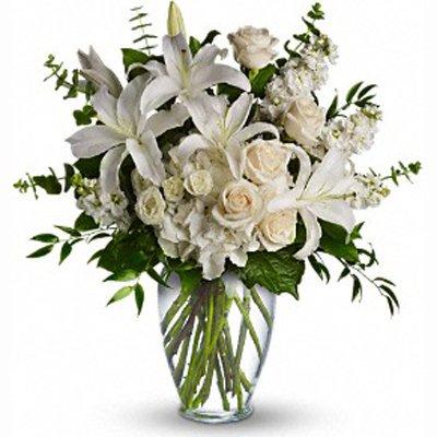 חגיגי בלבן - פרחי שובל - בלפור 137 בת ים