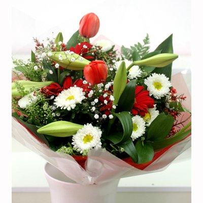 נשיקה אדומה - פרחי שובל - בלפור 137 בת ים