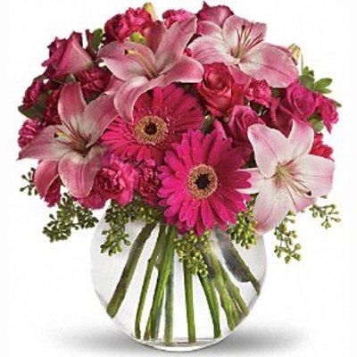 נשיקה ורודה - פרחי שובל - בלפור 137 בת ים