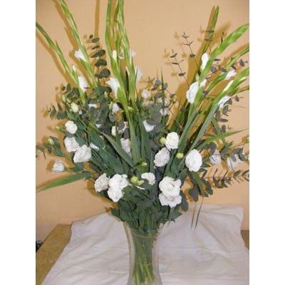 29 - פרחי אוריינטל - אור יהודה