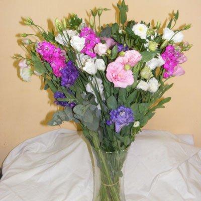 30 - פרחי אוריינטל - אור יהודה