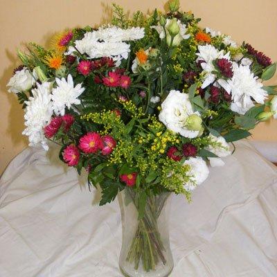 31 - פרחי אוריינטל - אור יהודה