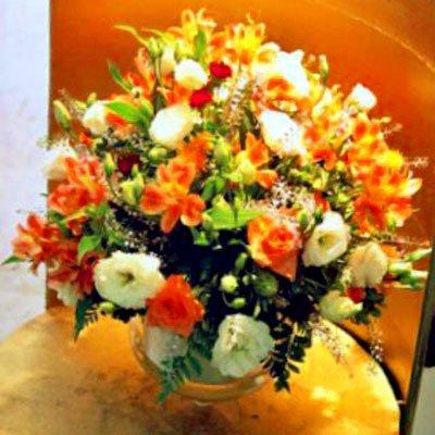 אביב - לב הפרח - מודיעין