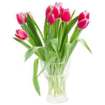 אגרטל עם טוליפים - פרחי ויולט - אריאל