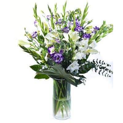 אהבה בסגול ולבן - פרח בר - עמק חפר