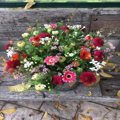 אופק פרחי שדה - בוקטו - גדרה