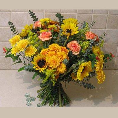 אור הזריחה - פרחי אלונה - טבריה