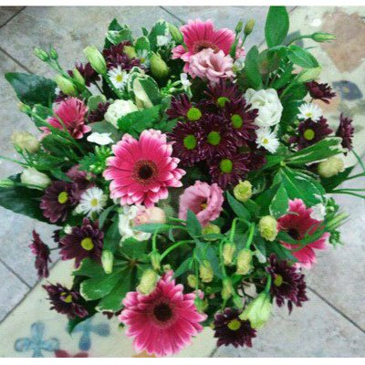 אלגנטי בורוד - דבי פרחים - קרית ביאליק