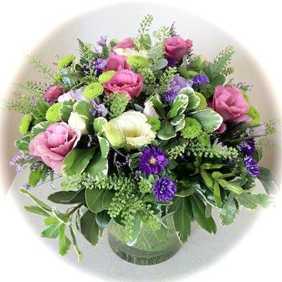 בוקה באגרטל - אורכידאה פרחים - חדרה