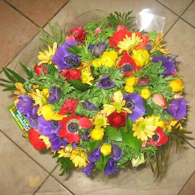 בוקה פרחי חורף  - פרחי אודי ודורית - קרית אתא