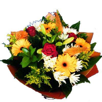 בוקר כפרי 29  - רנה פרחים - מעלה אדומים