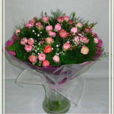 בידר נוריות ורוד - פרחי אורית - עכו