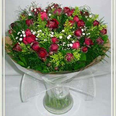 בידר נוריות סגול - פרחי אורית - עכו