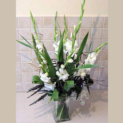 גלים של אושר - פרחי אלונה - טבריה