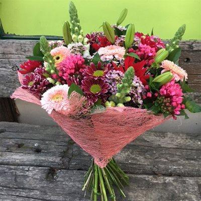 דליה - רנה פרחים - מעלה אדומים
