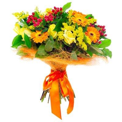 היפיריקום, סולידגו, וגרברות - פרחי ויולט - אריאל