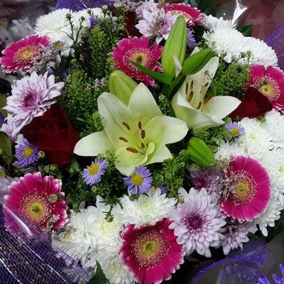 המפואר - פלורנס פרחים - נהריה