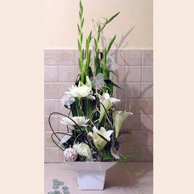 התחלה חדשה - פרחי אלונה - טבריה