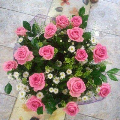 ורדים ורודים - דבי פרחים - קרית ביאליק