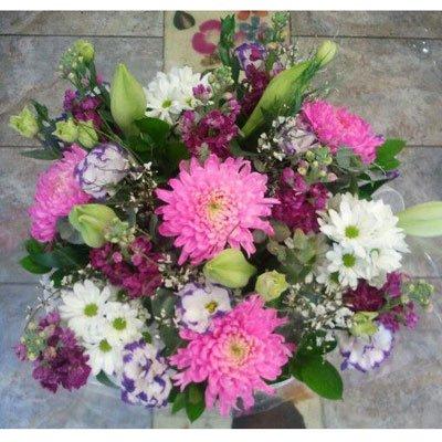 ורוד אופטימי - דבי פרחים - קרית ביאליק