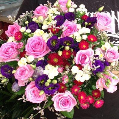ורוד מטריף - פלורנס פרחים - נהריה