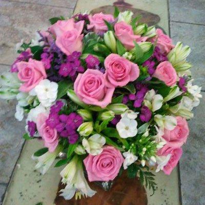 ורוד מלבלב - דבי פרחים - קרית ביאליק