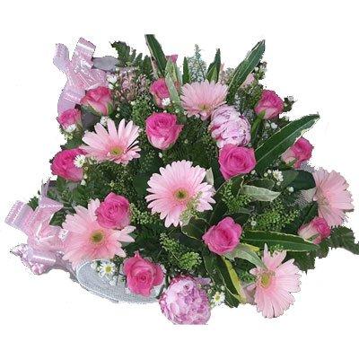 ורוד על גווניו - דבי פרחים - קרית ביאליק