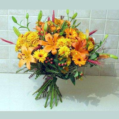 זריחה בכתום - פרחי אלונה - טבריה