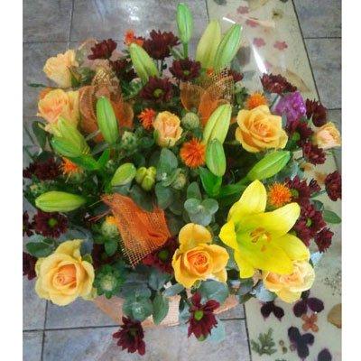זריחה בצהוב וכתום - דבי פרחים - קרית ביאליק