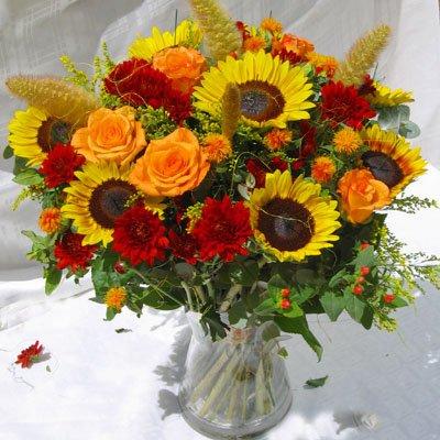 זריחה חדשה - פרחי אלונה - טבריה