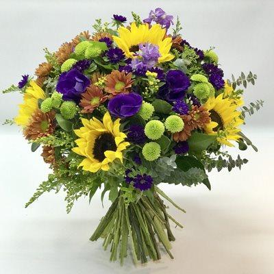 זריחה כפרית - אורכידאה פרחים - חדרה