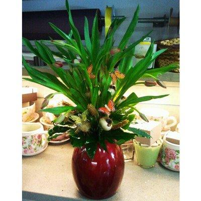 זר טוליפים בכלי מיוחד - דבי פרחים - קרית ביאליק