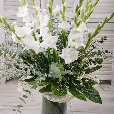 זר סייפנים - בר פרחים וכלים - אשקלון