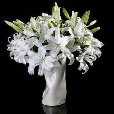 חגיגה לבנה - לב הפרח - מודיעין