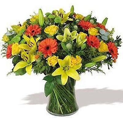 חגיגת צבעים - פרחי המשק - כפר הס