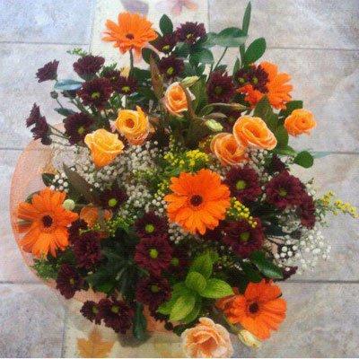 חלום בכתום - דבי פרחים - קרית ביאליק