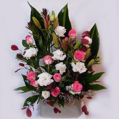 חלום ורוד - רנה פרחים - מעלה אדומים