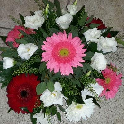 חלום צבעוני - פלורנס פרחים - נהריה