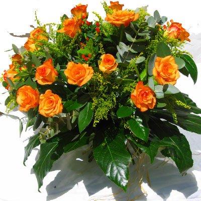 יום כתום - פרחי אלונה - טבריה