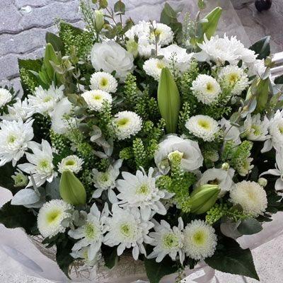 ימים לבנים - פלורנס פרחים - נהריה