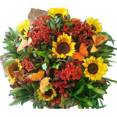 כפרי וקיצי - דבי פרחים - קרית ביאליק