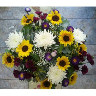 כפרי - דבי פרחים - קרית ביאליק
