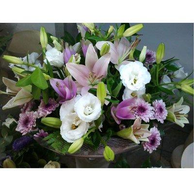 לבלוב בסגול - דבי פרחים - קרית ביאליק