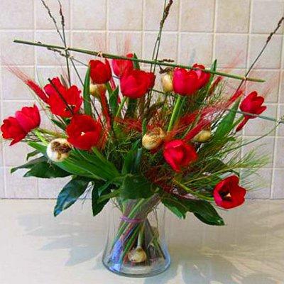 לחיות את הרגע - פרחי אלונה - טבריה