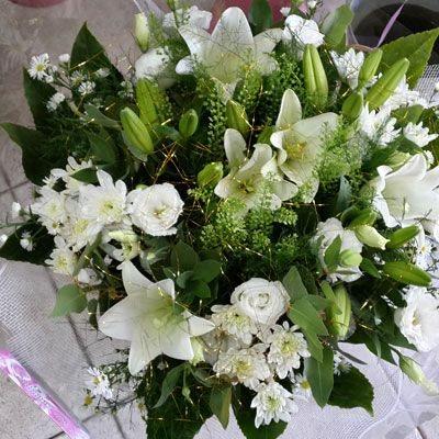 לילות לבנים - פלורנס פרחים - נהריה