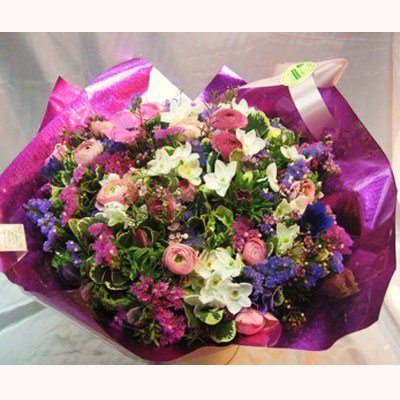 מבחר פרחי חורף - פרחי צבר - רמת השרון