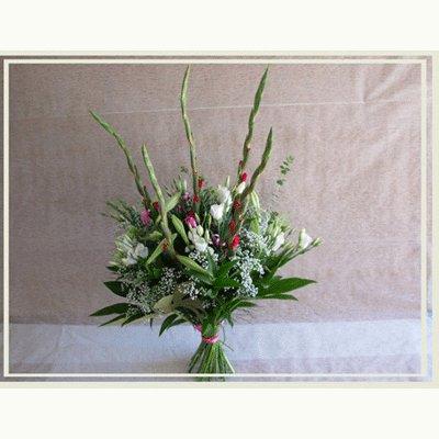 נגיעות של צבע - פרחי אורית - עכו