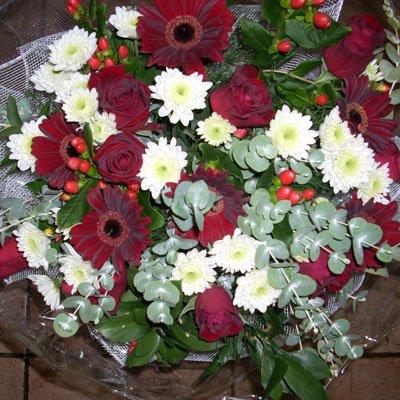ניצוצות אהבה - פרחי יערה - חיפה