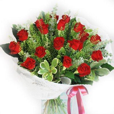 נשיקות אדומות - פרח בר - עמק חפר